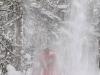Снег с деревьев