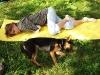 Хозяйка и пес